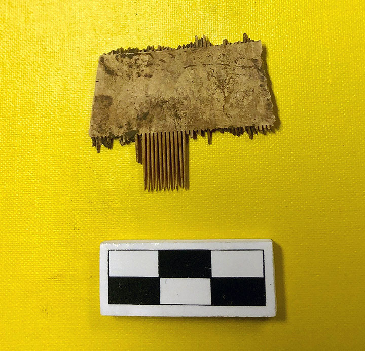 A lice comb made from bone.