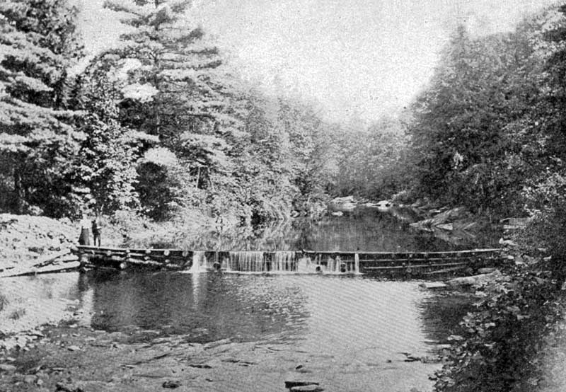 The old dam in Analomink.